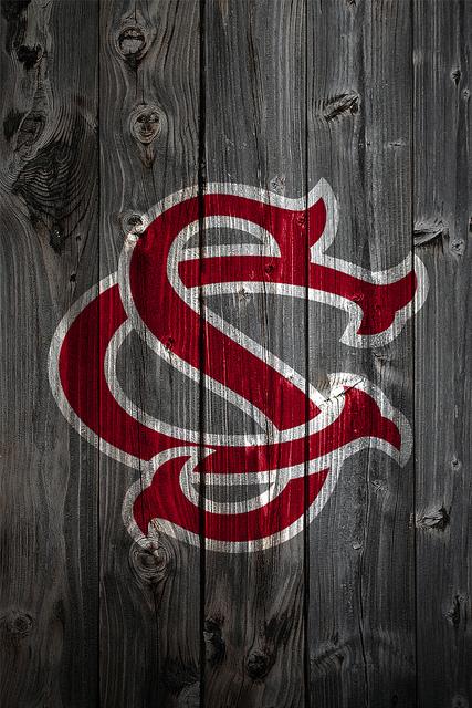 South Carolina Gamecocks Alternate Logo Wood iPhone 4 Background 427x640