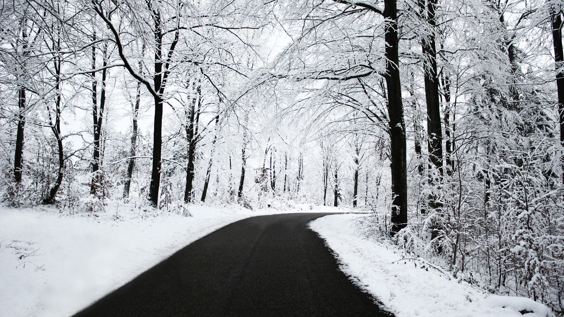 Winter Road Wallpapers HD Wallpapers 1920x1080