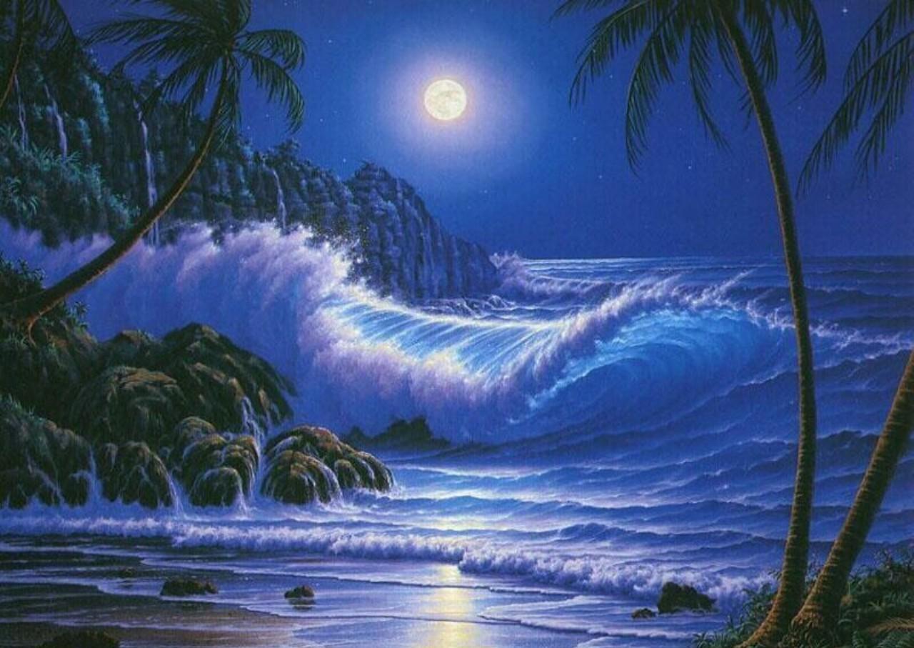 Good Wallpaper Night Beach - s0eGIZ  Graphic.jpg