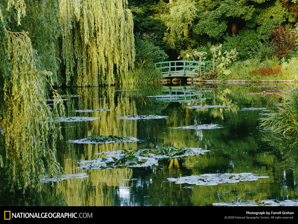 Monet Pond 1989 Photo of the Day Picture Photography Wallpapers 1024x768