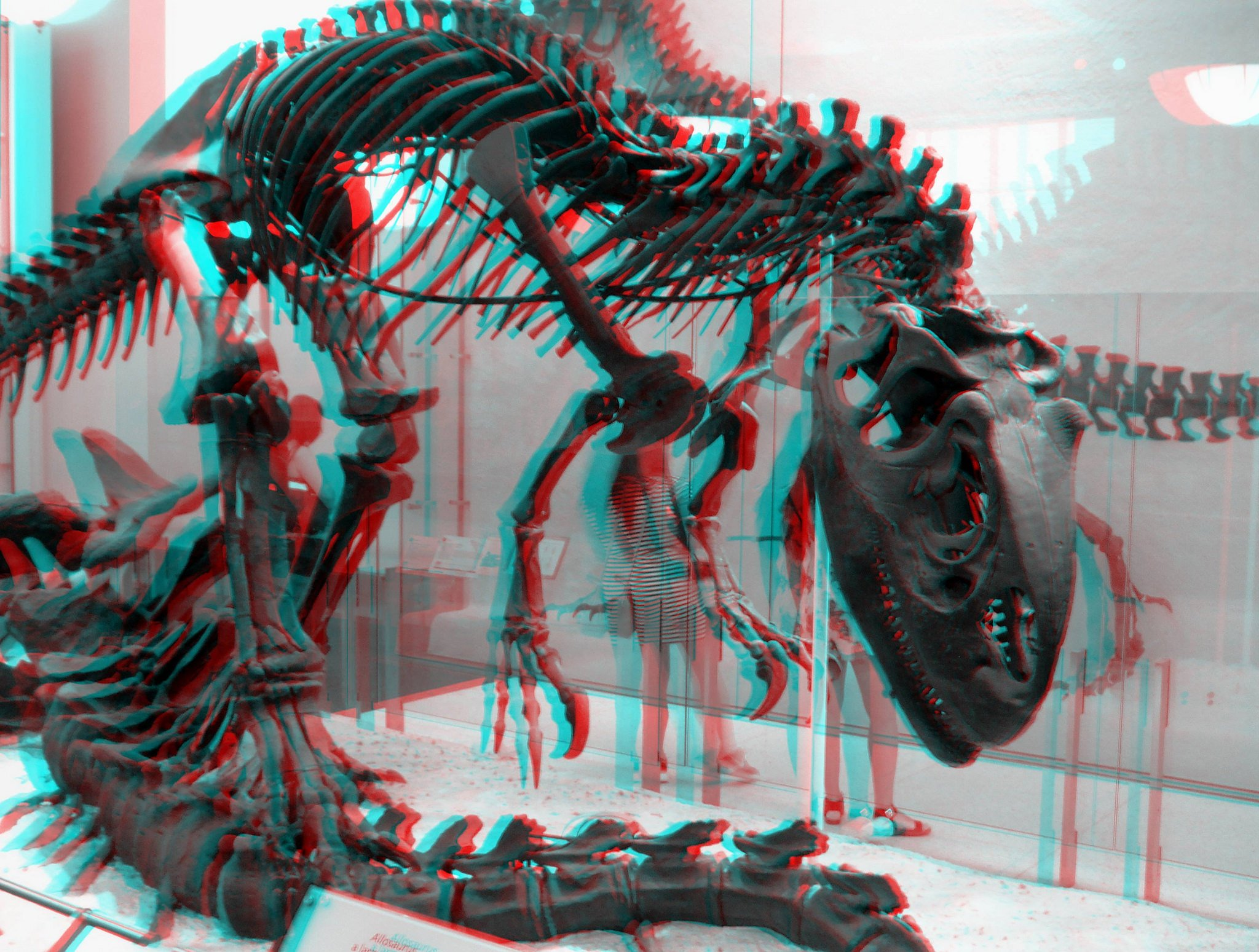 3D anaglyph Glasses wallpaper 2048x1549 424908 WallpaperUP 2048x1549