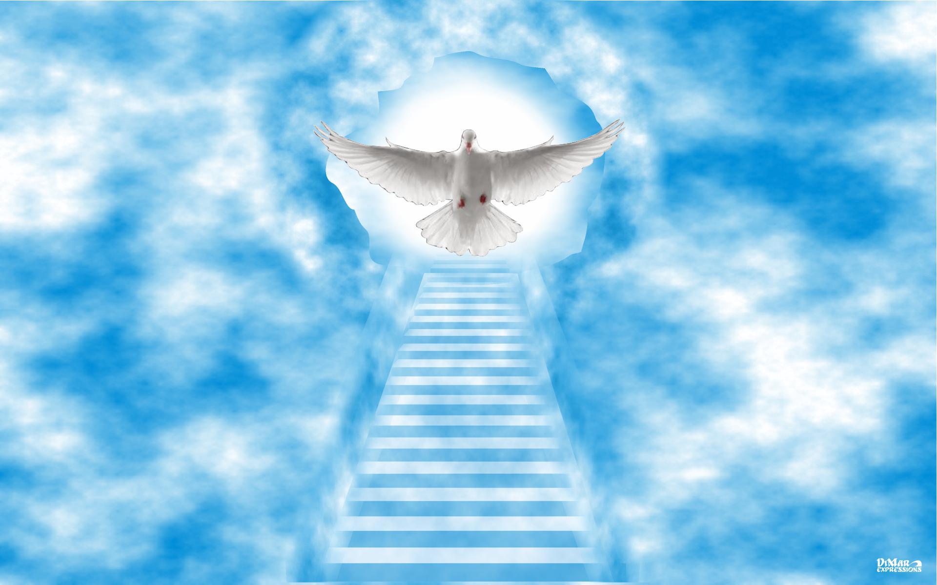 Heaven Images Backgrounds - WallpaperSafari