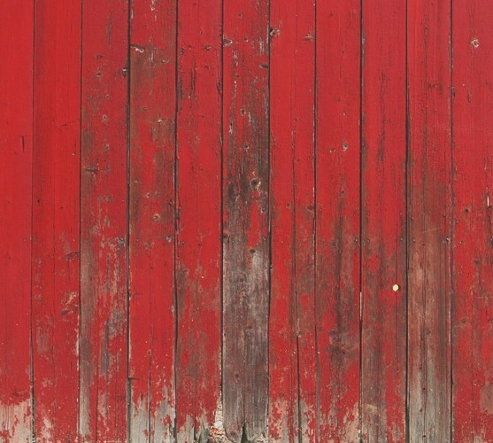 Red Barn Mural Wallpaper M9220   sample   Contemporary   Wallpaper 557x500