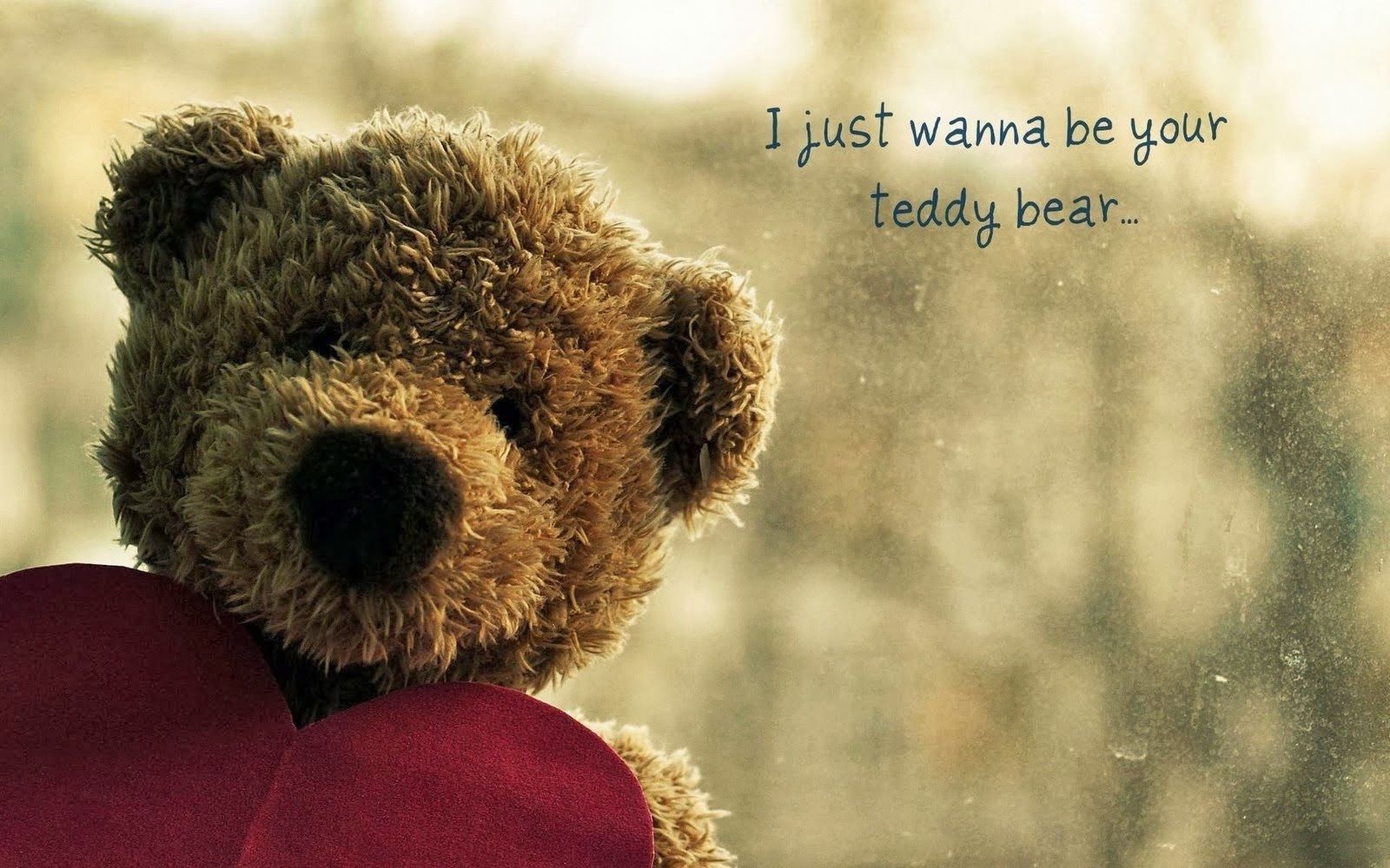 Cute Teddy Bear Pictures HD Images Download desktop Wallpapers 1600x1000