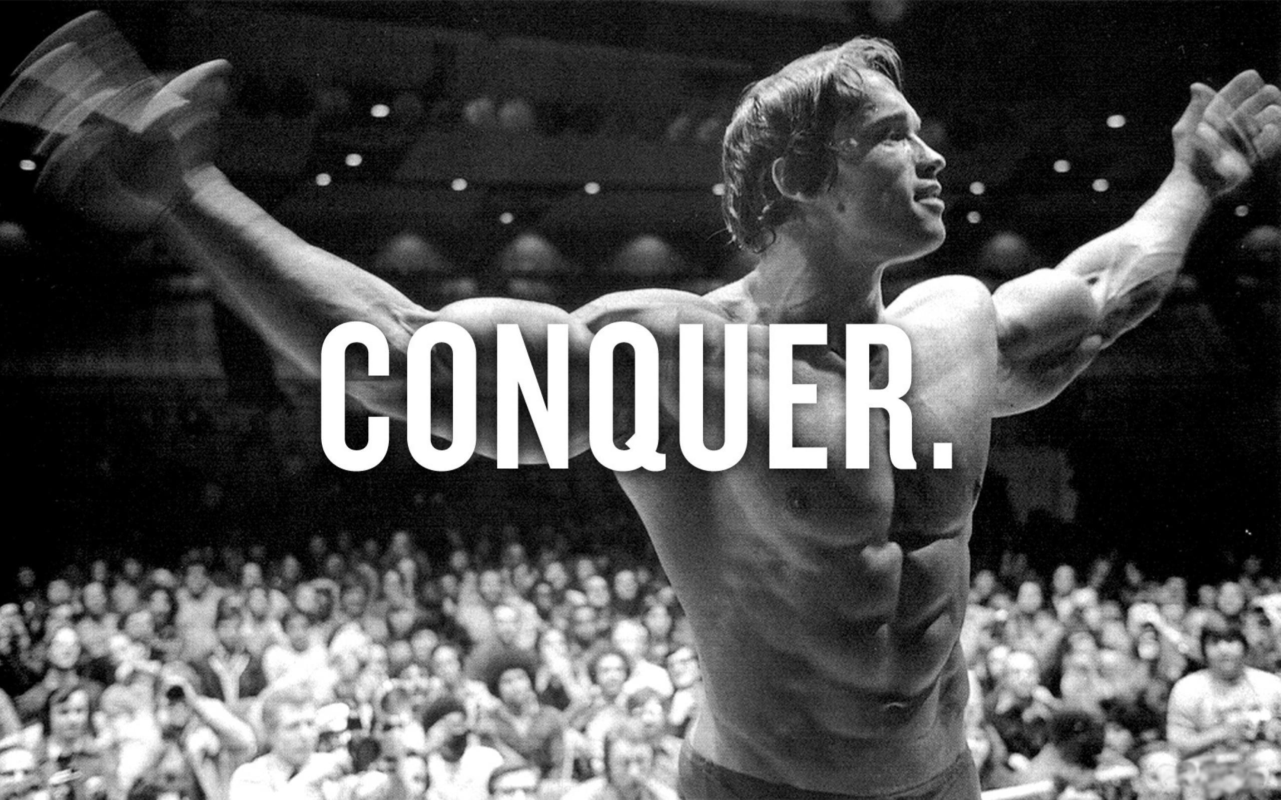 Arnold Schwarzenegger Conquer Wallpaper 73 images 2560x1600