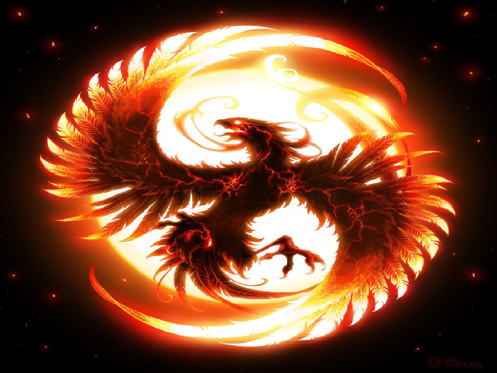viewing phoenix hd wallpaper color palette tags phoenix category birds 1600x1200