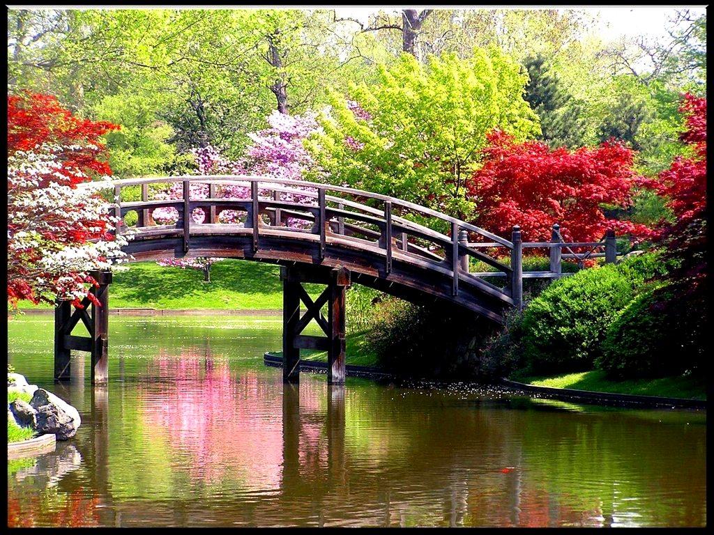 Spring Desktop Background 1024x768
