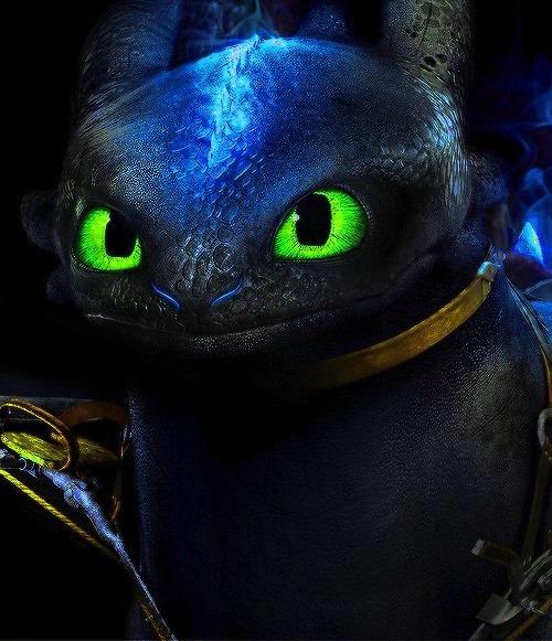 Toothless The Alpha Edited by Toothless121 500x581