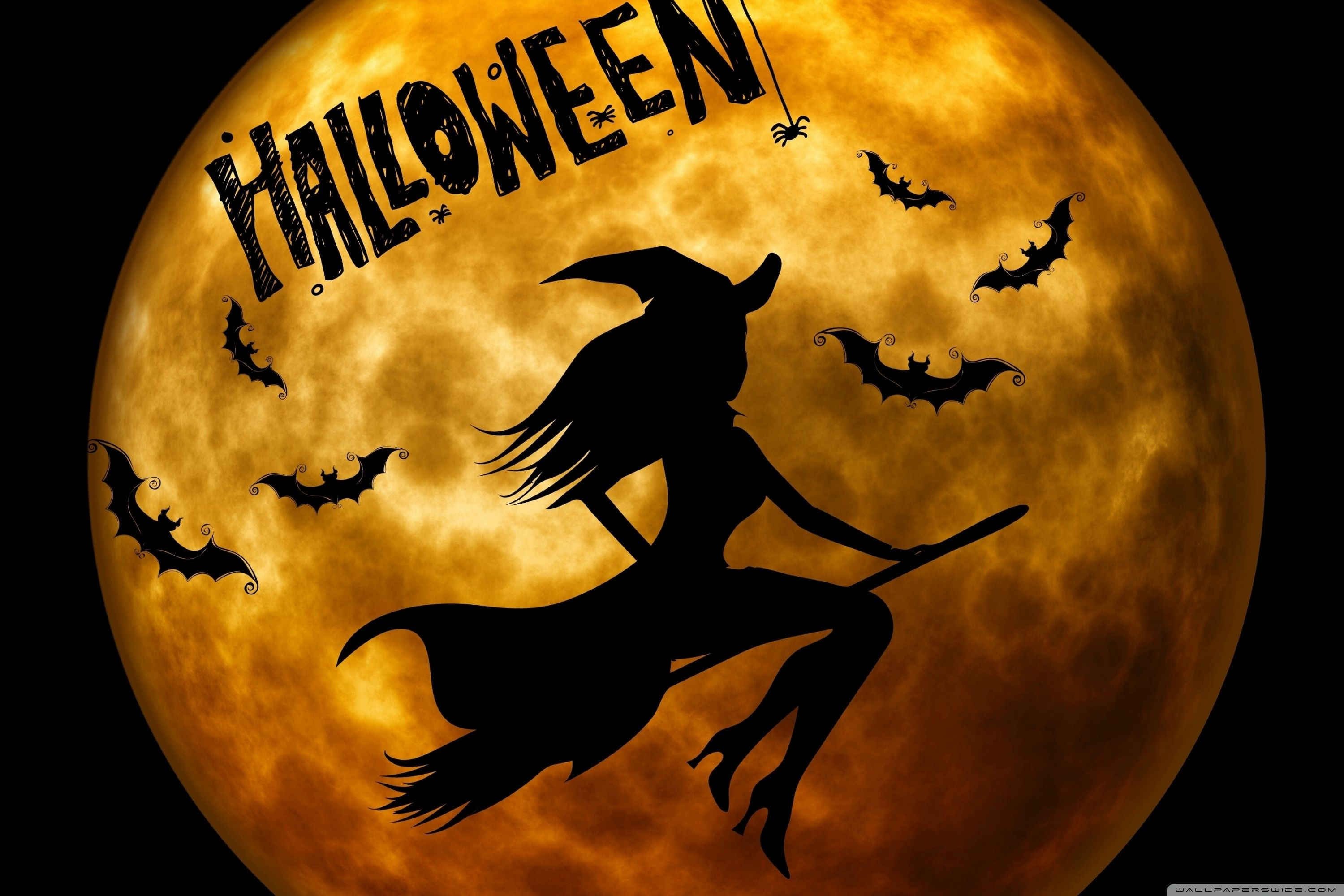 Halloween Witch On Broom Wallpapers   Top Halloween Witch On 3000x2000