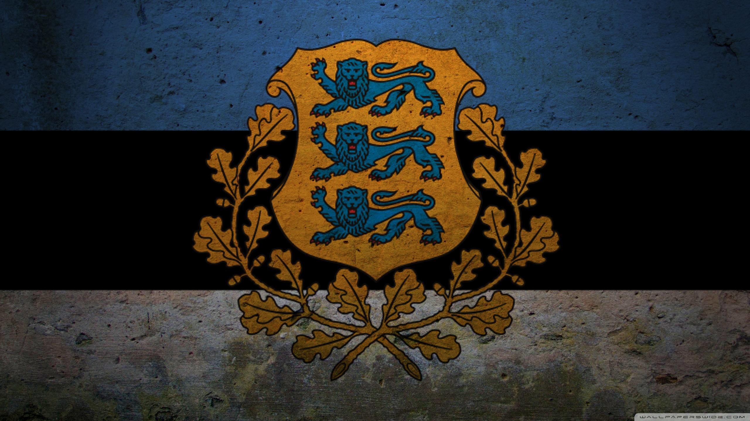 Presidential Flag Of Estonia 4K HD Desktop Wallpaper for 4K 2560x1440