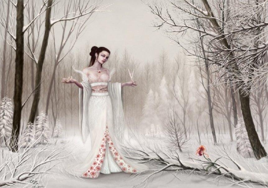 winter hexe Vektorgrafik   ForWallpapercom 861x605