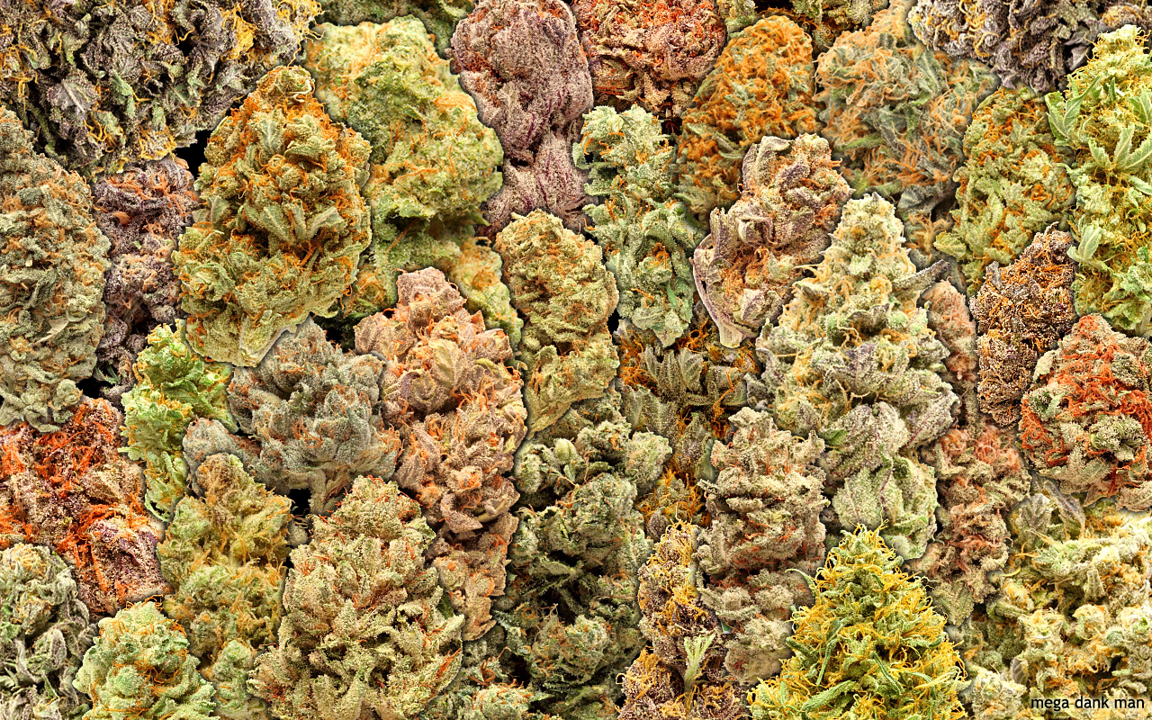 Weed Buds Wallpaper 1280x800