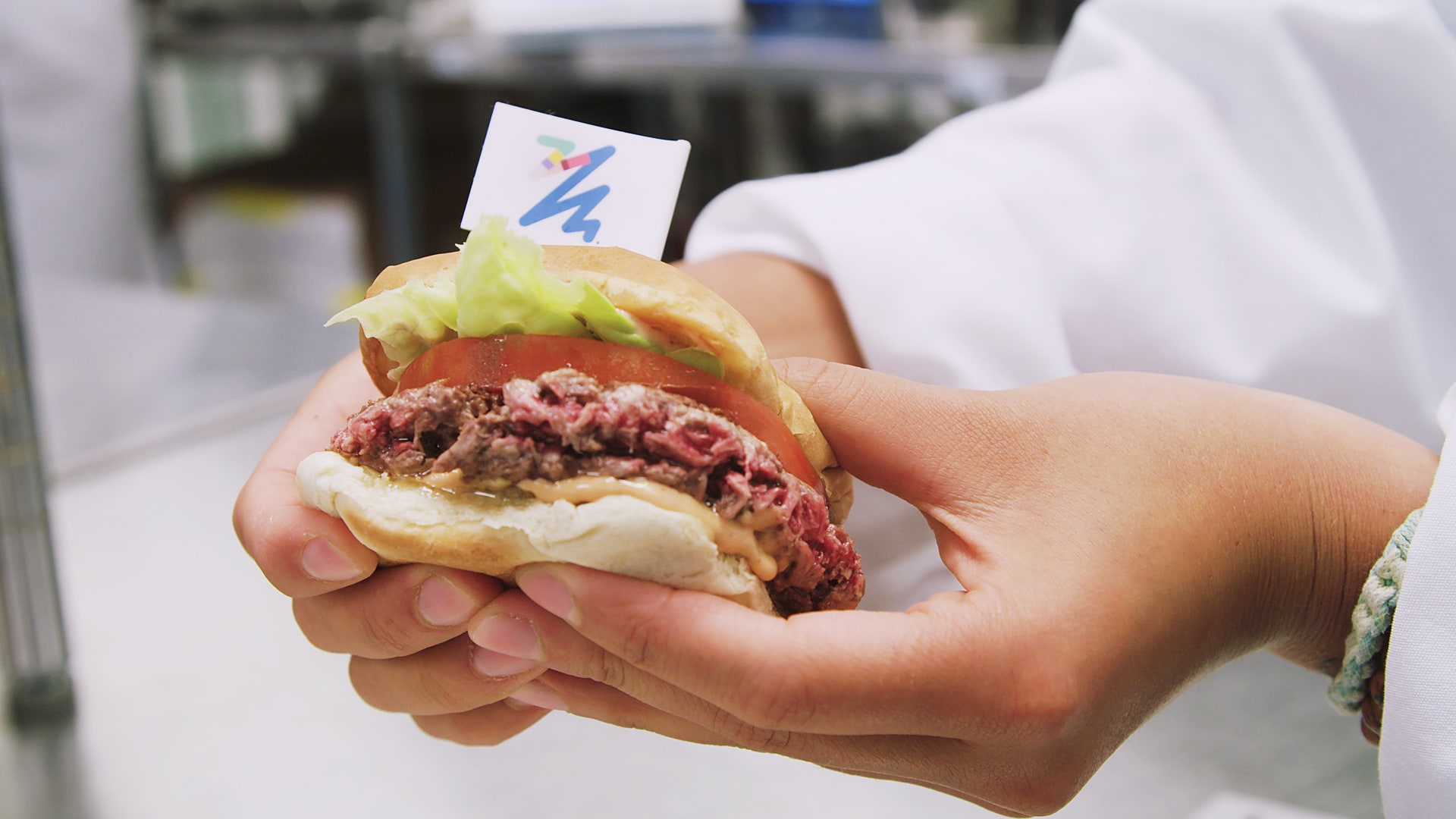 The Impossible Burger Inside the Strange Science of the Fake Meat 1920x1080