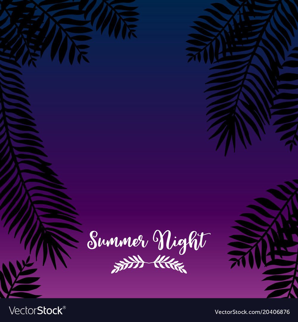 Summer night hand drawn tropic background Vector Image 1000x1080