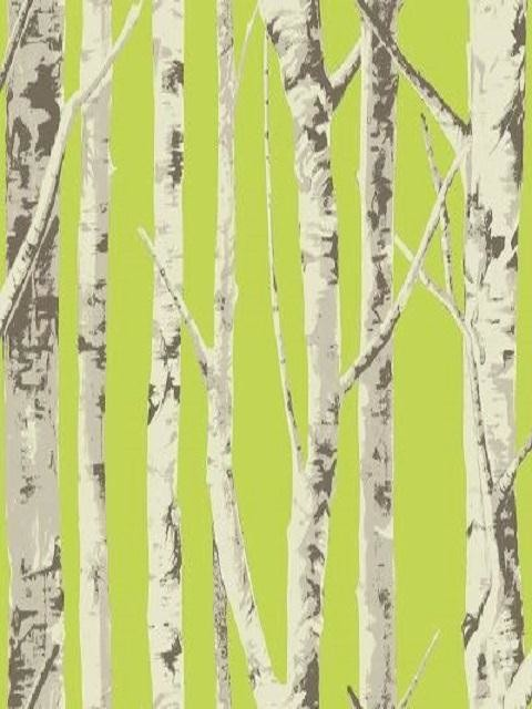 Tree Wallpaper from Eco Chic   Contemporary   Wallpaper   houston   by 480x640