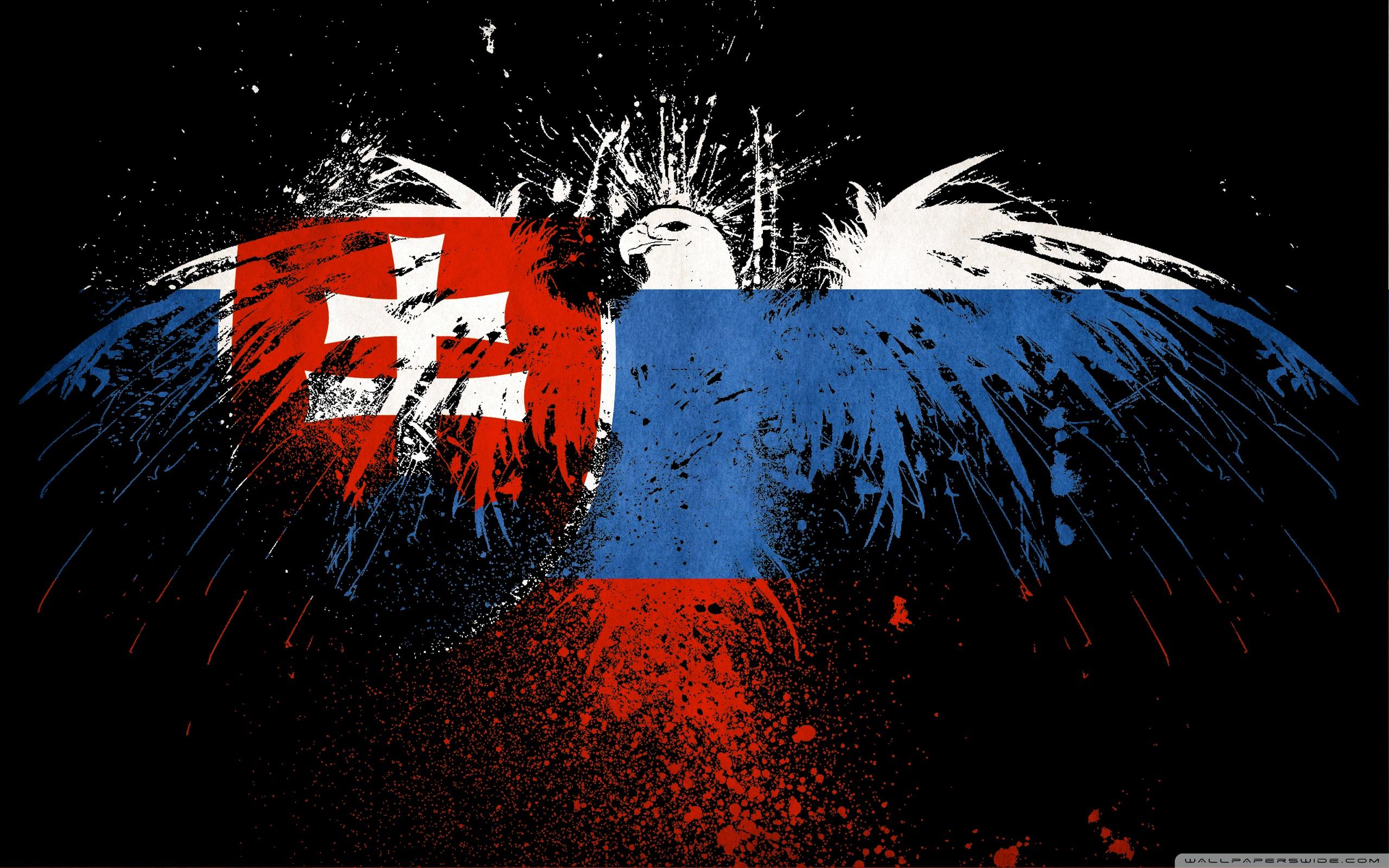 Download Grunge Flag Of Slovakia HD desktop wallpaper High 2560x1600