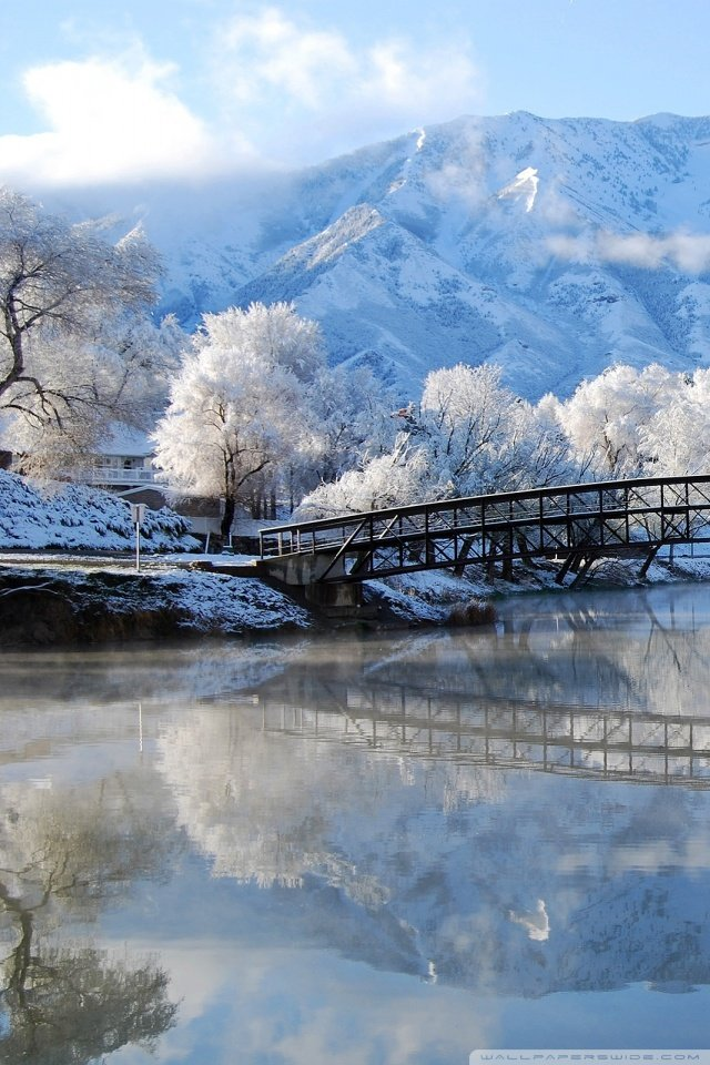 Beautiful Winter Scene 4K HD Desktop Wallpaper for 4K Ultra HD 640x960