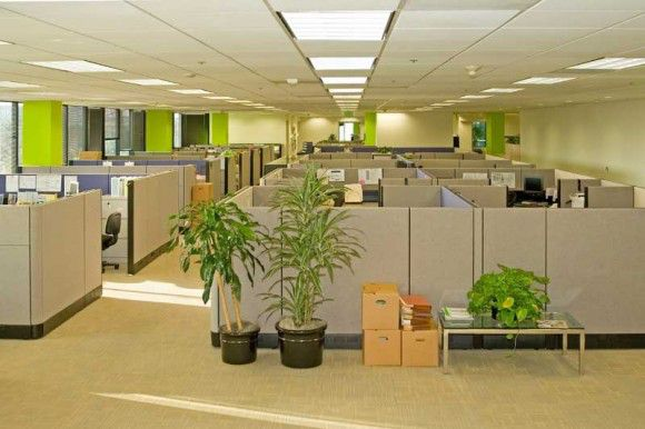 Cubicles Office Space 580386 126753 HD Wallpaper Res 580x386 580x386