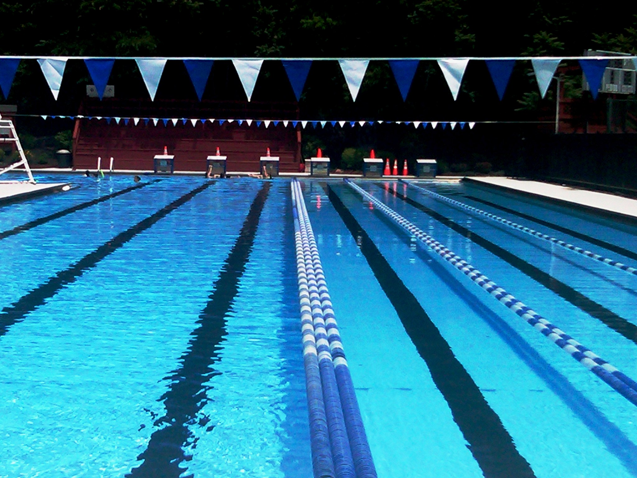 high quality olympic swimming pool swimming pool sullivan memorial olympic spitalerhof on