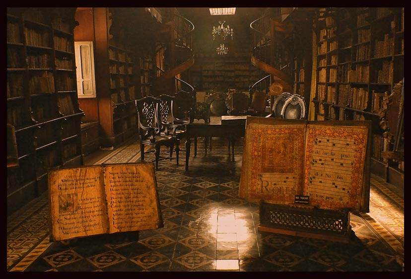 Antique Library By Sedats 828x561