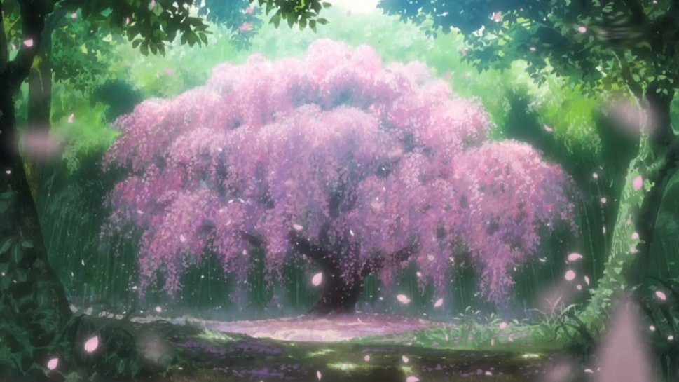 41 Anime Cherry Blossom Wallpaper On Wallpapersafari