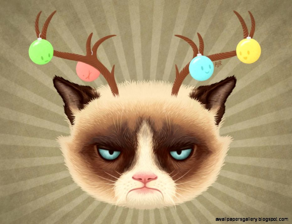 Grumpy Cat Christmas Wallpaper Wallpapers Gallery 931x714