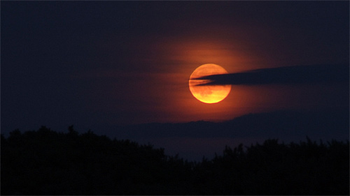Red cool moon wallpaper 500x281