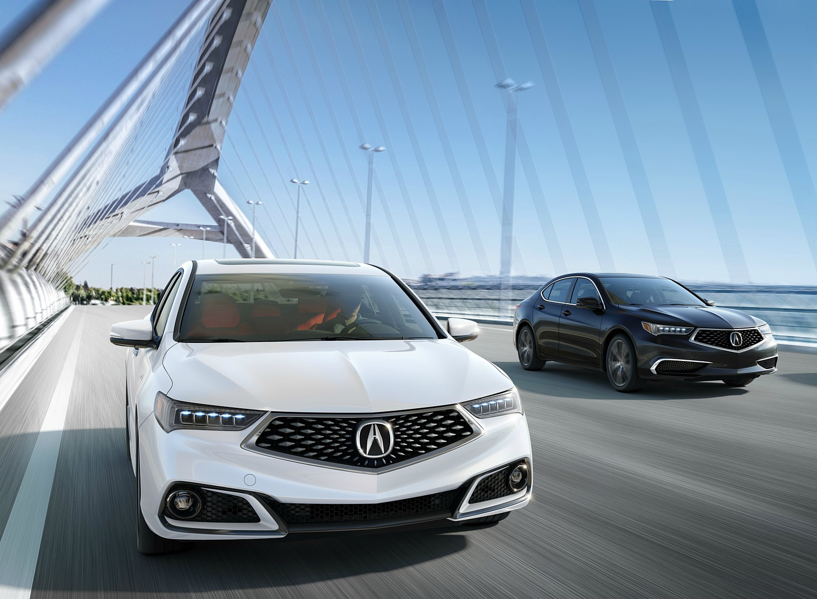2019 Acura TLX Wallpapers 54 HD Images   NewCarCars 1600x1172