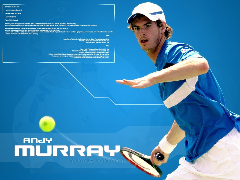 Tennis Andy Murray wallpapers 1024x768