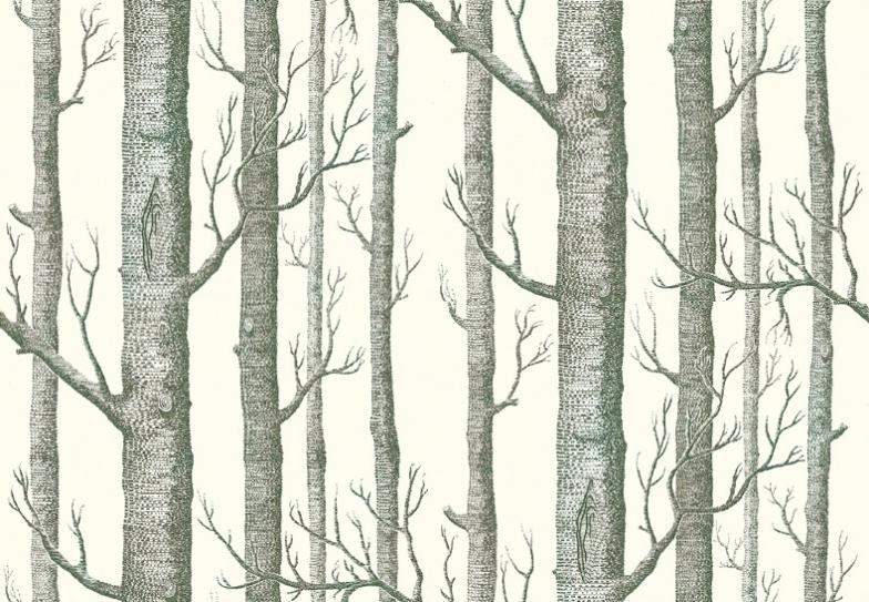 Woods Wallpaper by Cole and Son 784x543