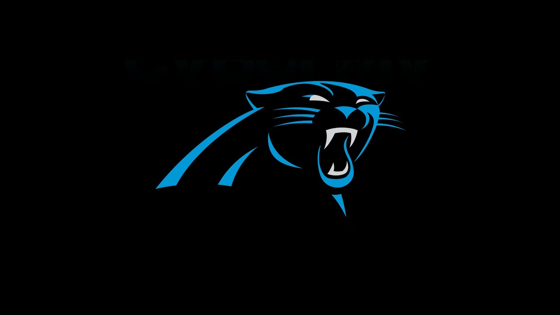 Carolina Panthers Wallpaper HD Wallpapers Carolina panthers 1920x1080