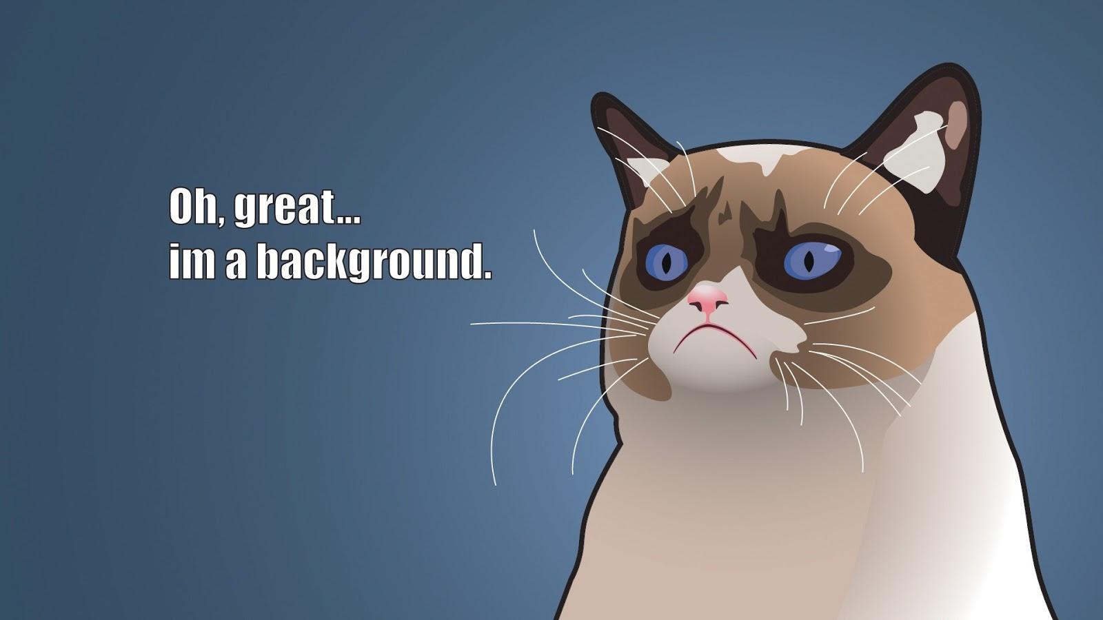 Grumpy Cat Cartoon 1600x900