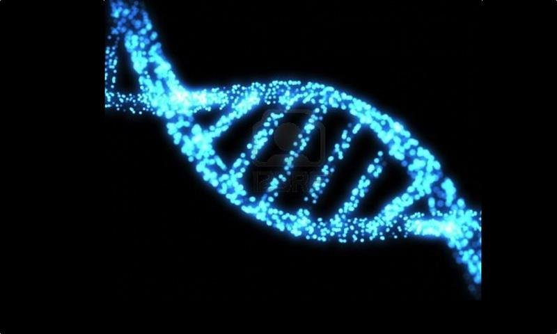 3D DNA Wallpapers HD Wallpapers 800x480