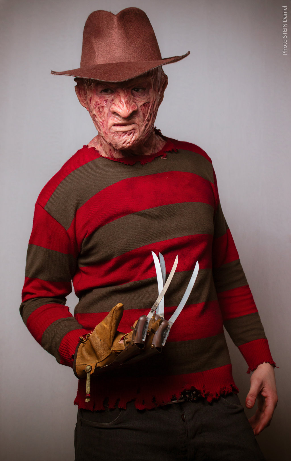 50 freddy cougar wallpaper on wallpapersafari - Pictures of freddy cougar ...