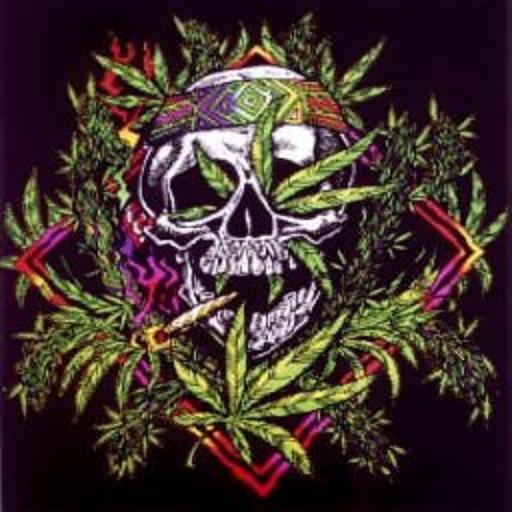 Galleries Weed And Skulls Drawings Weed And Skulls Wallpaper 512x512