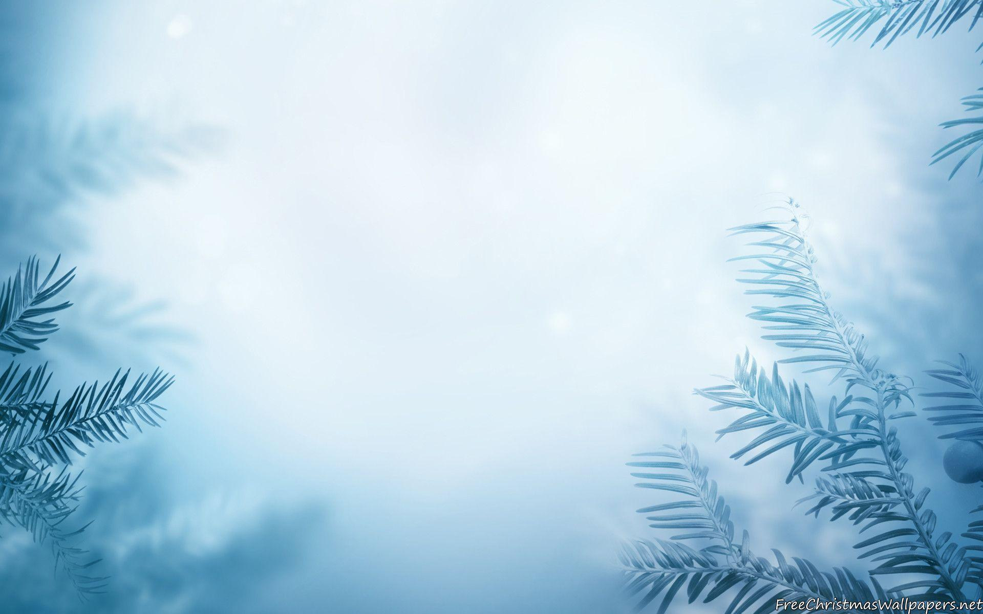 Winter Image Backgrounds 1920x1200