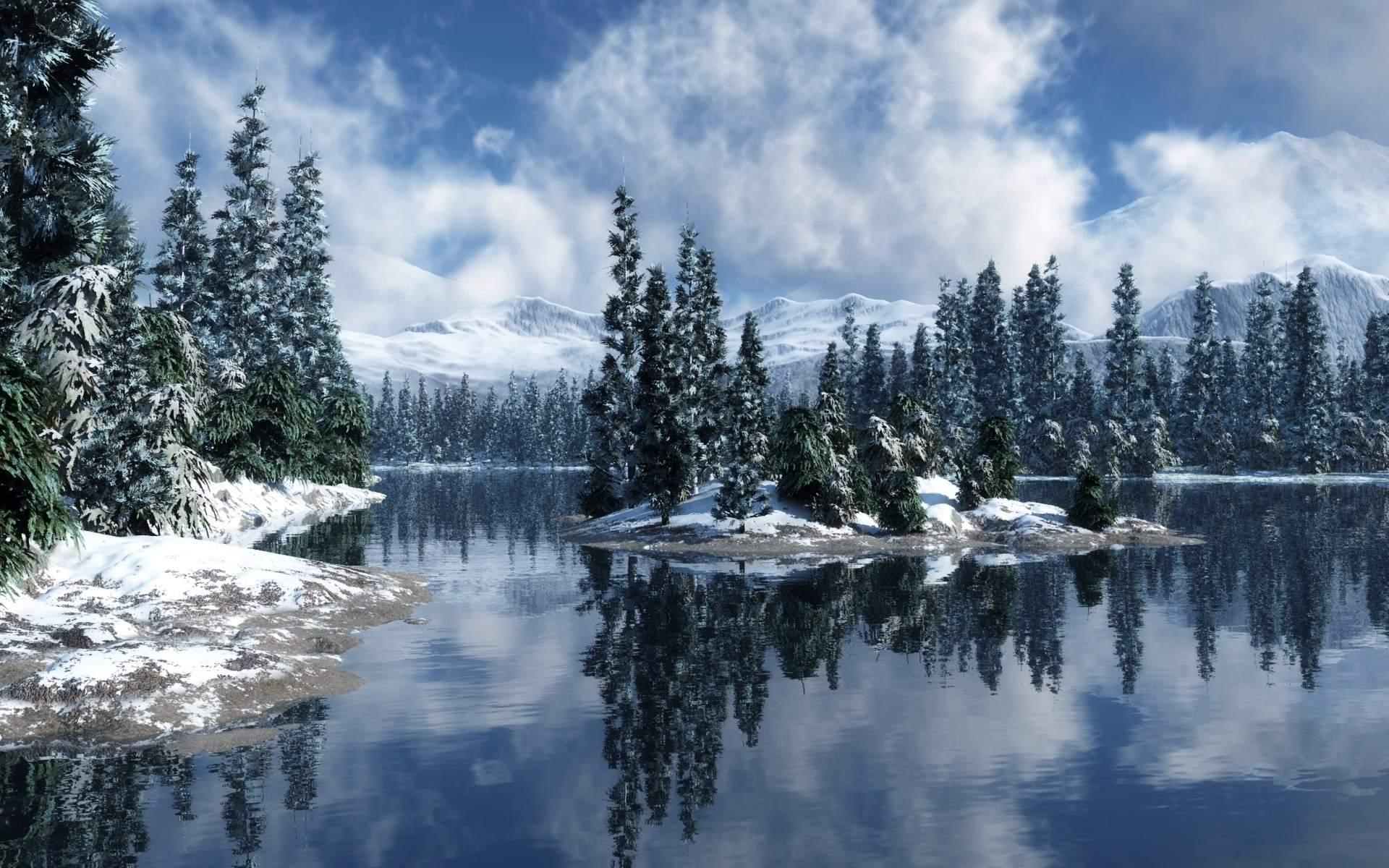 Snowy Forest Desktop Wallpaper - WallpaperSafari