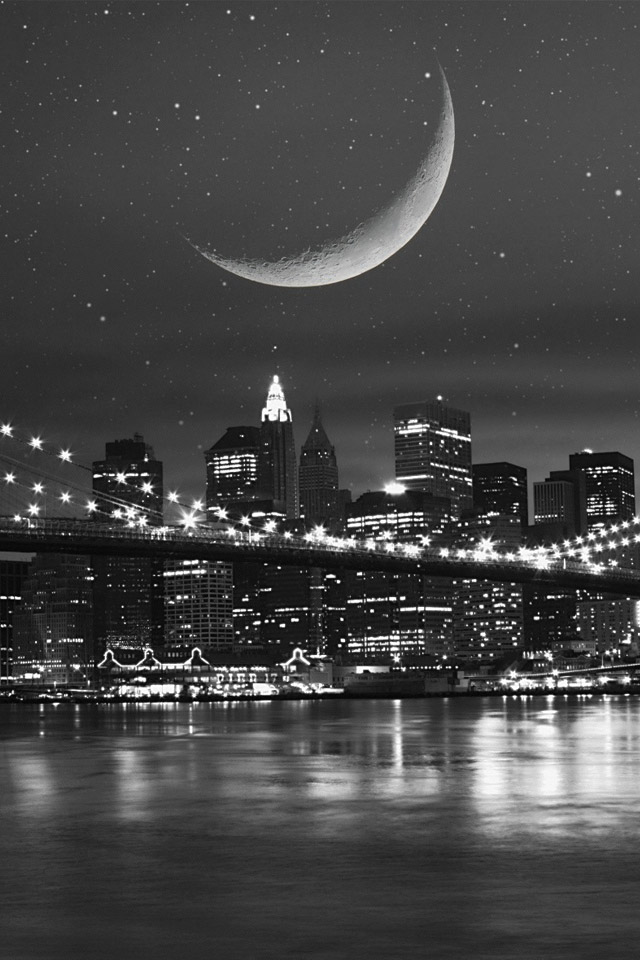 Black and white city and the moon 640x960