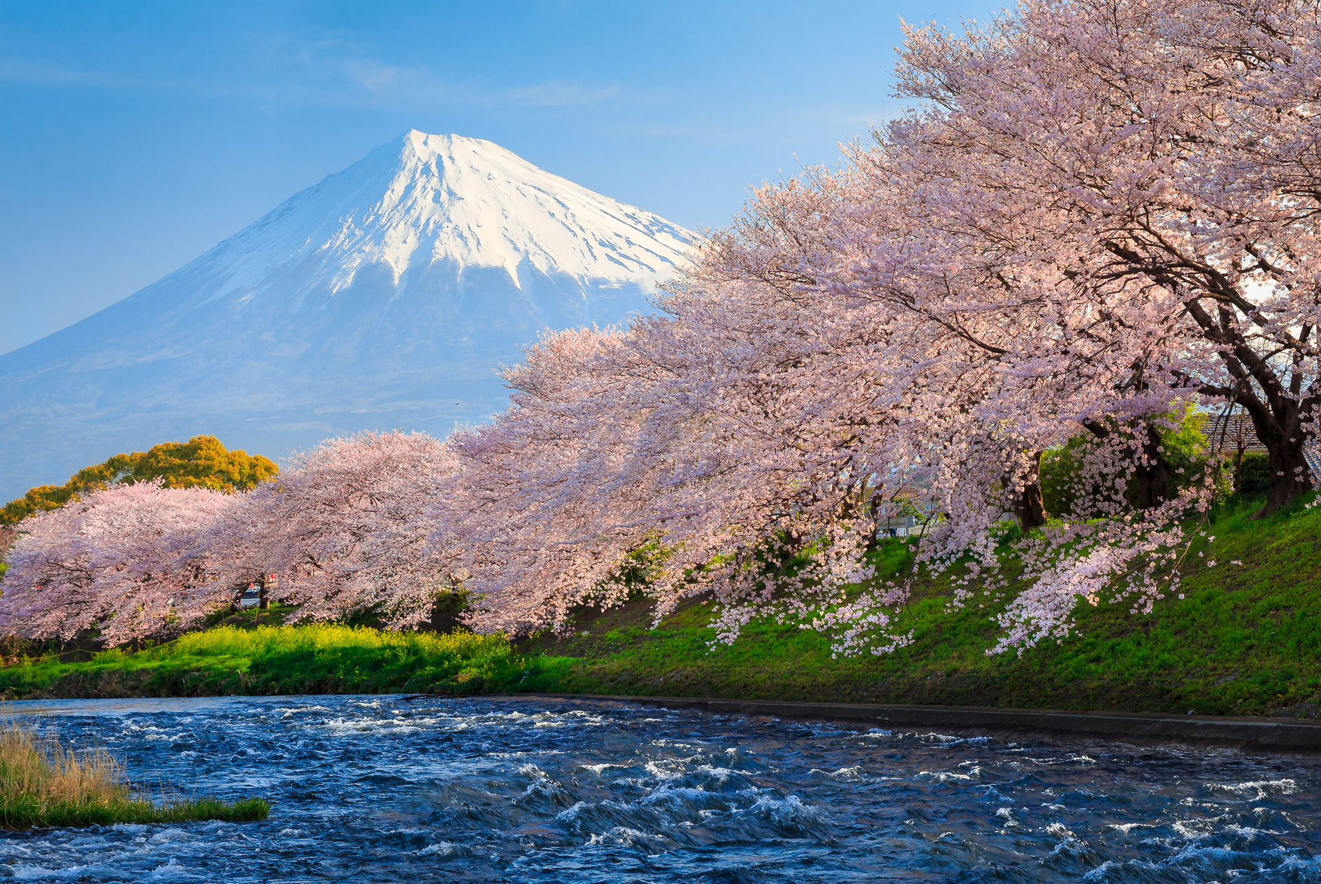 Mount Fuji HD Wallpaper Background Image 1920x1285 ID609072 1920x1285