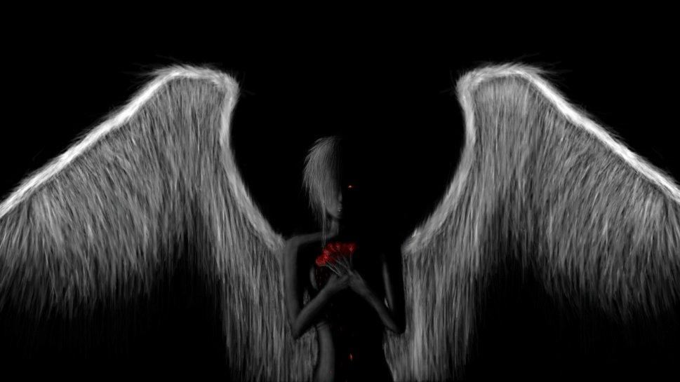 Fallen Angel wallpaper   ForWallpapercom 969x545