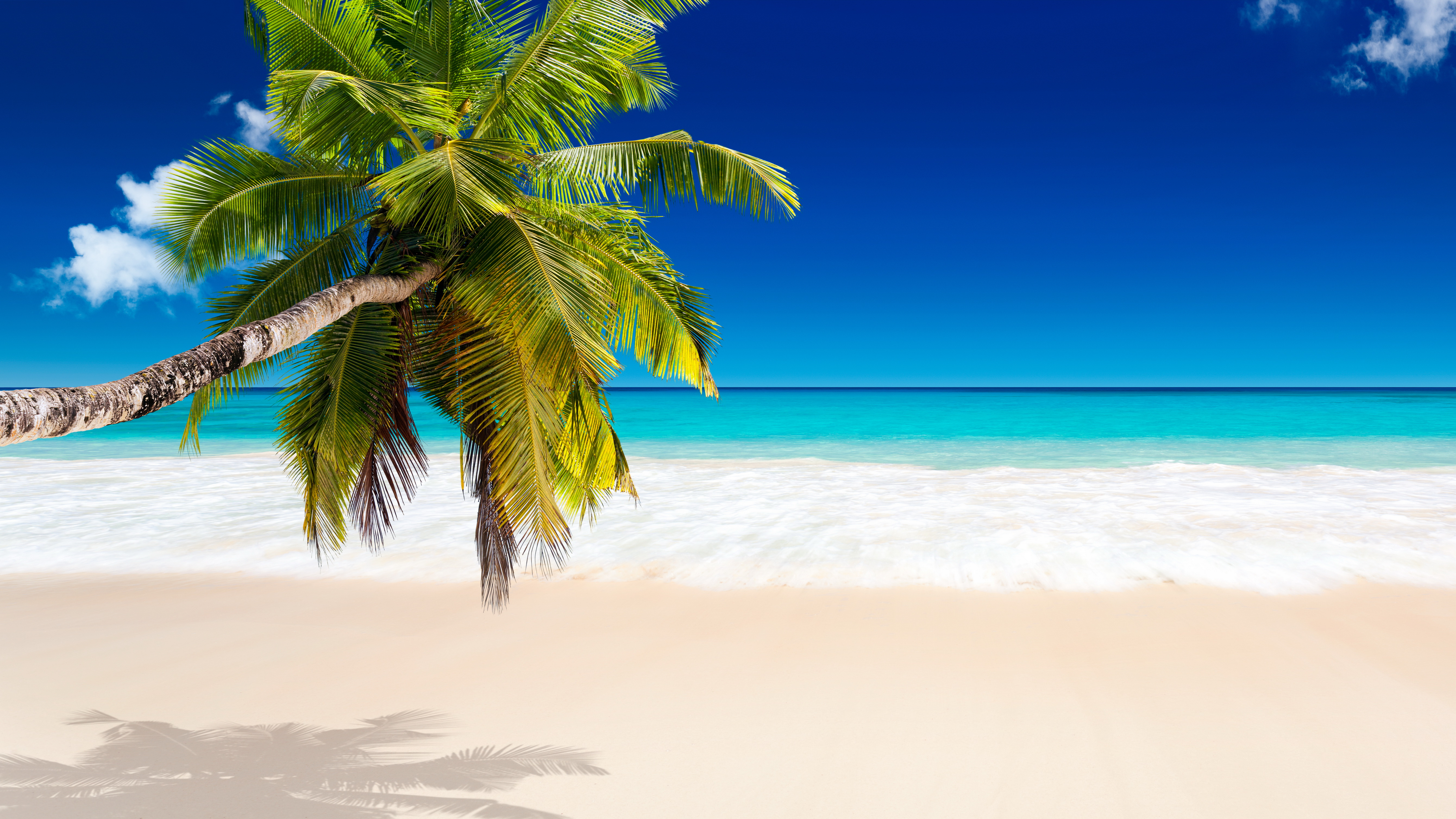 Tropical Beach Wallpapers Pictures Images 5360x3015