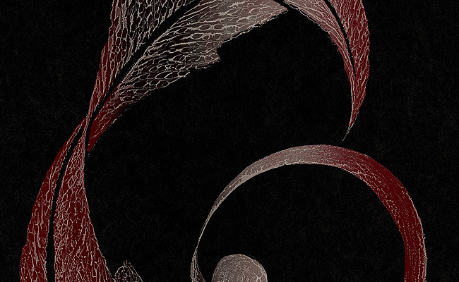 Abstract Wallpaper in Reds Metallic and Black Design by Carl Robinson 650x400