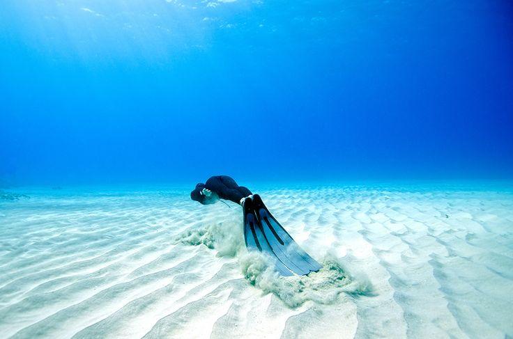 Freediving Underwater Freedive Photography Freedive Training in 736x487