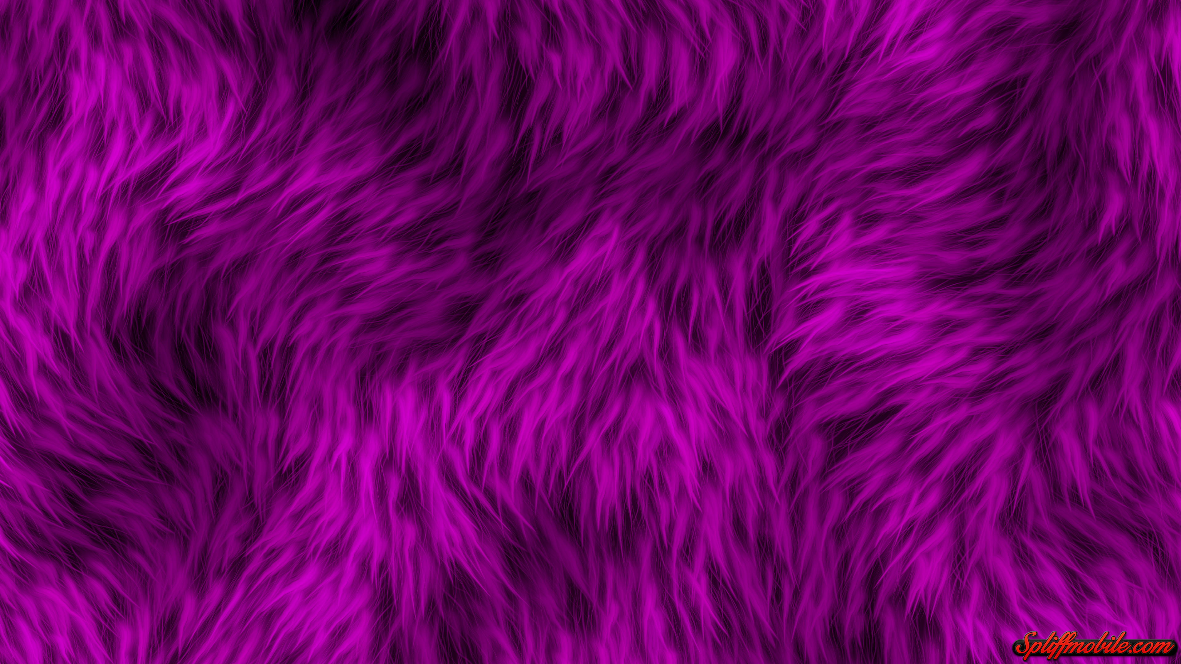 HD Furry Purple Wallpaper 3840x2160