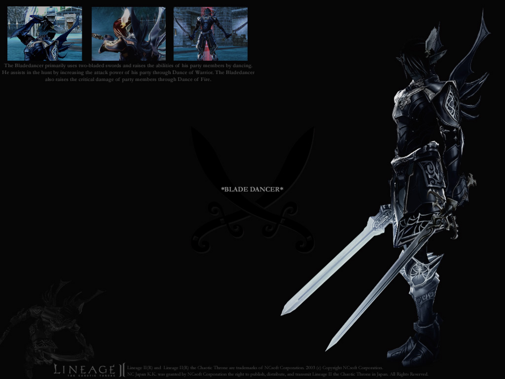 Photo Home Lineage 2 Blade Dancer   Lineage2 wallpaper 1024x768