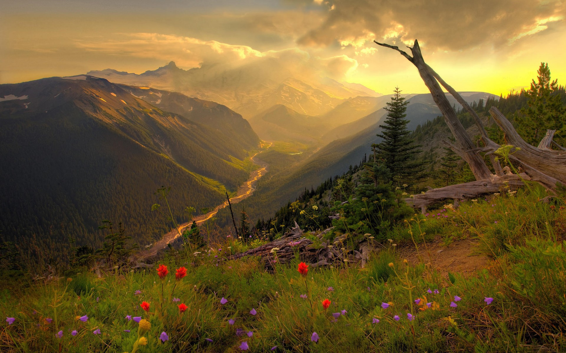 Beautiful Mountain Scenery wallpaper   481912 1920x1200