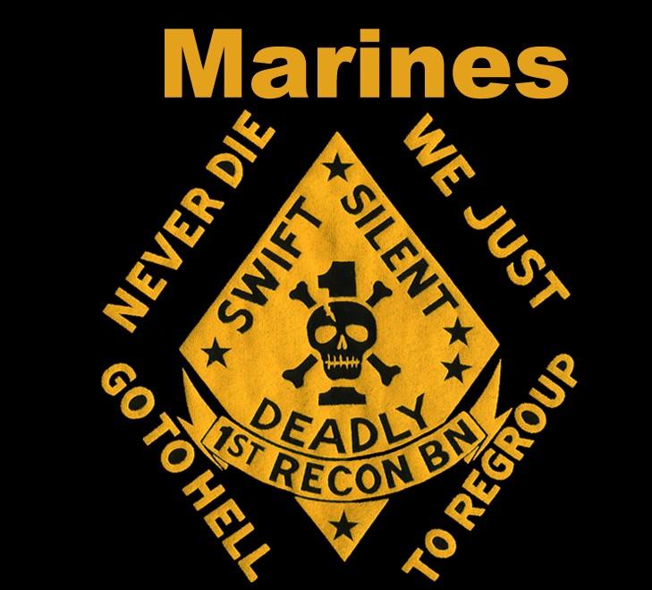 Marine Sniper Wallpaper Logo Marine Scout sn 729x659