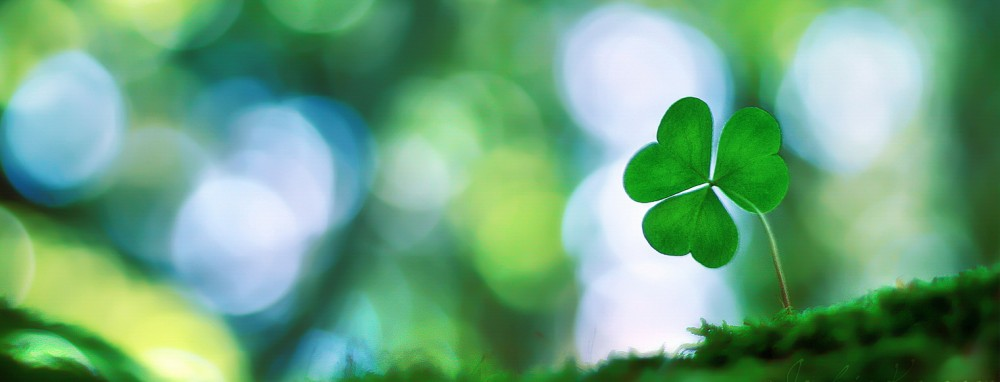 Irish Shamrock Wallpaper Shamrock mom 1000x382