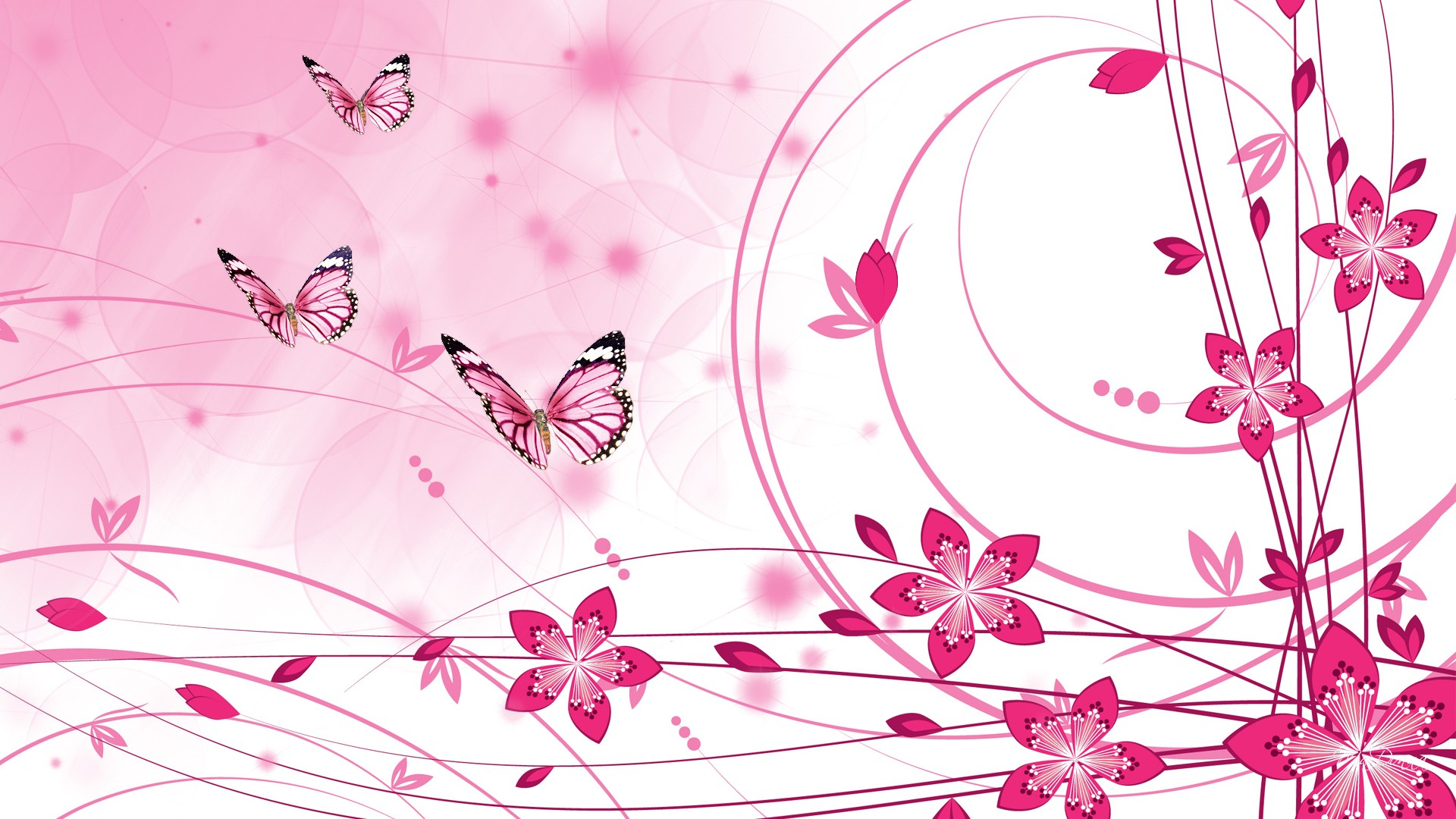 Pink Color HD Wallpapers   Wallpaper High Definition 1920x1080