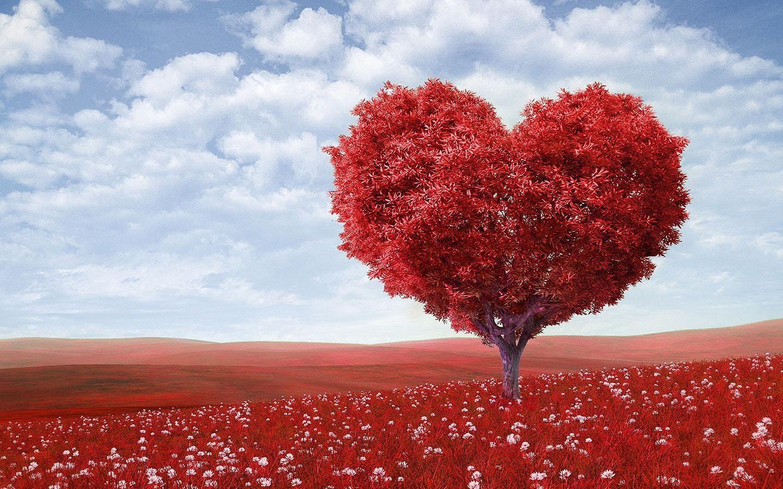 Free Download Love Desktop Wallpaper Firefox Wallpaper Download